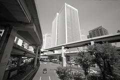 Roppongi, Tokyo (View Master 187) Tags: camera leica ltm thread self 35mm canon screw wind kodak tmax 14 rangefinder mount developer 100 f2 developed vi trigger 20c l39 vit m39