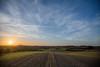 Denmark in the Spring (pamhule) Tags: china light sun green denmark spring eruope fields 中国 fullframe danmark 6d pamhule jensschott jensschottknudsen 佳能eos6d