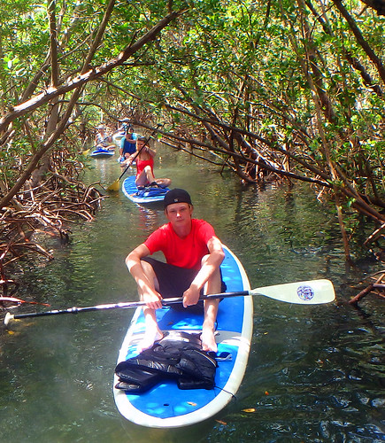 5-17-15 JackDee_Terry & Co Paddleboard Tour Sarasota  (15)