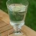 Water Glass by La Rochere