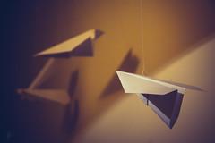 IMG_0005 (adam.gabrysiak) Tags: plane paper indoor planes string hanging strings paperplanes