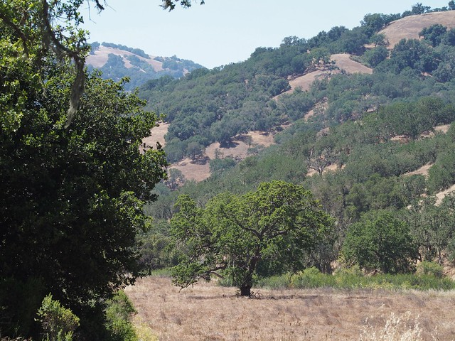 Henry Coe State Park, Hunting Hollow Entrance