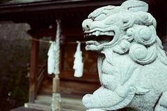 guard (Philip@Tamsui) Tags: film analog  nikon nikonfe fe nikkor afnikkor35mmf20 kodak kodakfilms 250d kodak250d kodakvision3250dcolornegativefilm5207 japan   temple  guard