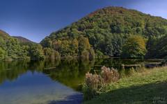 Lakes of Gnningen (KF-Photo) Tags: 1610 gnningen genkingen herbstverfrbungen spiegelungen ufer uferbsche talmhle
