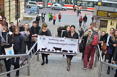 TDR_8788 (teosolar) Tags: animalrights animals farm vegan symbolism boycott anima animal exploitation govegan czech republic brno