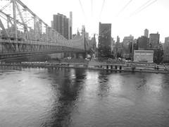 Around New York: Roosevelt Island, Sep. 2016 (yapima1) Tags: newyork rooseveltisland queensborobridge 59thstreetbridge edkochqueensborobridge bridge eastriver