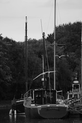 Boats on the canal. (Barry Miller _ Bazz) Tags: boats boat canal water canon widnes halton cheshire sailing 5d mark 3 300mm f4 lens l