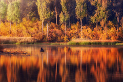Fishing in autumn (Psztor Andrs) Tags: autumn colors yellow red brown reed water lake boat men fishing fisherman trees forest leafs sunset sun light sigma 70300mm calmness silence nature dslr nikon hungary andras pasztor photography