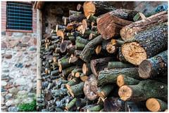 Llenya apilada (Rafel Miro) Tags: bosc bosque catalunya cayalonia firewood forest llenya mura serradelobac troncos troncs trunks lea esp