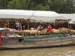 Coconut takes flight (program monkey) Tags: vietnam mekong river delta cargo boat ben tre tra vinh coconut processing bank riverside factory husk midair pile