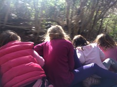 Four small girls and me in the back of the ute. Coming back from Deal Island Lighthouse