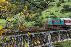 Automn in Greece (Nikos Kantiris) Tags: greece kantiris bridge train rails automn caterpillar ose ελλαδα καντηρησ γεφυρα γραμμεσ φθινοπωρο οσε φθιώτιδα