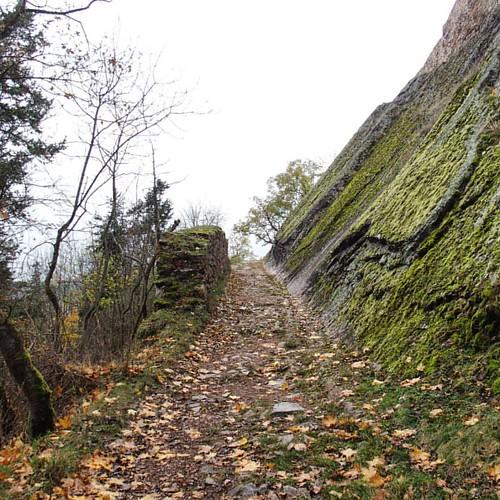 What's around that corner? ••• #curiosity #goexplore #fall🍁 #autumncolors #fallwalks #grayday #bohemianstyle #bohemia #czechrepublic #ig_czech #točník #destinationsunknown  #travelphotography #travelgram #travel #nomad #iwanttogo #travelling #w