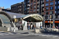 Photo Bombing Pigeon (Eddie C3) Tags: newyorkcity streetscenes upperwestside manhattan