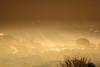 Morning mist (sgl0jd) Tags: wales cymru snowdonia snowdonianationalpark betwsycoed capelcurig llugwy llynelsi ogwen sheeppen bouldering climbing sunset goldenhour reflection moelsiabod ygarn foelgoch forest coed coedgwydyr gwydirforest