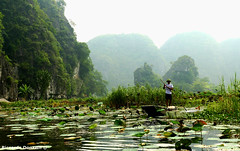 Vietnamese farmer on the river (riccardo.donzelli) Tags: vietnam travel backpacking backpacker asia vietnamese farmer river tam coc rice ninh binh