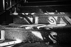mamor stein und eisen (chipsmitmayo) Tags: nikon f100 nikkor 85mm f14 kodak trix 400 adonal rodinal 150 film analog kleinbild selfdeveloped selbstentwickelt schwarzweiss blackandwhite caoscan 9000f treppe stairs schatten kringel sonne geländer