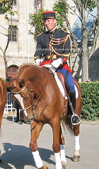 bootsservice 07 8317 (bootsservice) Tags: arme army uniforme uniformes uniform uniforms cavalerie cavalry cavalier cavaliers rider riders cheval chevaux horse horses bottes boots riding boots weston eperons spurs gants gloves gendarme gendarmerie militaire military garde rpublicaine paris