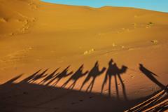IMG_6196 (Israel Filipe) Tags: marrocos
