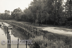 "Spoon River Anthology Lucinda Matlock (claudionimuc) Tags: spoonriver edgarleemasters america selenio seppia crema poesia morti fernandapivano pivano antologia de andre"" pavesi 2016 art rural"