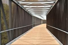Stevens Creek Trail Walkway (J-Fish) Tags: bridge pedestrianbridge stevenscreektrail mountainview california d300s 1685mmvr 1685mmf3556gvr