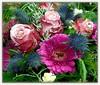 Winter Floral Postcard (swetlanahasenjäger) Tags: doublefantasy coth