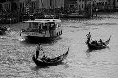 Grand Canal (Sophai900) Tags: venice venecia venezia italia italian architettura italy europe canon travel photo venedig venesië venise venetië veneza