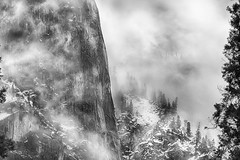 Trees and fog in Yosemite Valley (jgokoepke) Tags: yosemite yosemitevalley california usa fog clouds trees rocks bw hdr mhdr