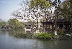 -  / Hangzhou Xi Hu (kelvintkn) Tags: china leica colour digital 35mm prime hangzhou  manualfocus  xihu rangefiner leicam8  leicasummicronm35mm leicasummicronm35mmiv