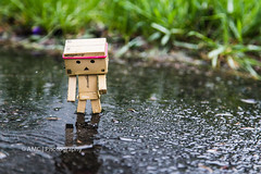 Rainy Day ({Andrea}) Tags: rain toy mini odc breakfree day143 revoltech danboard canoneos6d danbomini day143365 3652013 365the2013edition 23may13