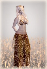 Lioness (Alea Lamont) Tags: animal cat african avatar tail lion ears whiskers neko lioness afrikan magika ndmd