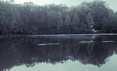 peace (LauraSorrells) Tags: mist water forest pond woods digitalplay solitude jasper peace may silence iphone 2013 snakedoctorpond episcopalchurchoftheholyfamily somberbeauty intersectionofworlds