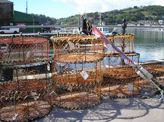 Potting For Lobsters (Sir Hectimere) Tags: fishing shellfish fishingboats lobsterpots fishingquay teignmouthbackbeach portofteignmouth