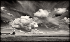 Clouds (stejo) Tags: sky cloud clouds landscape skåne himmel cumulus sverige raps moln jonstorp skånelän tomelilla simrishamnv ilobsterit