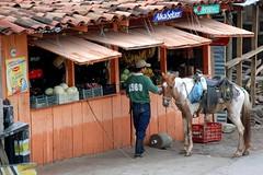 Tienda, Copan, Honduras (Jerry Cotten) Tags: horses honduras conveniencestores