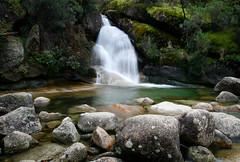 Ladies Bath Falls Mt Buffalo (laurie.g.w) Tags: park ladies fall water creek waterfall buffalo bath stream mt bright victoria falls national waterway