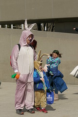 Easter Bunnies (andrickthistlebottom) Tags: toronto bunnies easter fight pillow nathanphillipssquare 2015