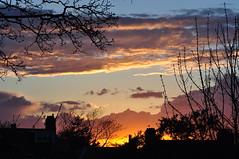 April evening sky (Kirkleyjohn) Tags: sunset sky silhouette clouds atardecer treesilhouette evening suffolk sonnenuntergang pôrdosol eveninglight coucherdusoleil