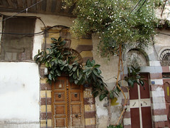 Damascene Street (Mohanad Alsous  ) Tags: street old arabic syria oriental orient damascus syrian  mohanad           alsous