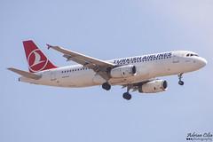 Turkish Airlines --- Airbus A320 --- TC-JUF (Drinu C) Tags: plane aircraft aviation sony airbus dsc turkish a320 mla turkishairlines lmml hx100v adrianciliaphotography tcjuf