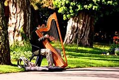 Le harpiste (Diegojack) Tags: details musique musicien harpe parcdelindpendance