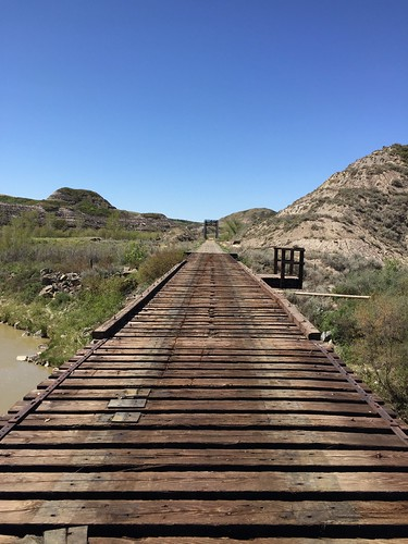 Rail bridges south west of Wayne Alberta