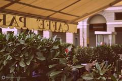 Bitella_Francesca_01