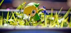 Toon Link amiibo (FaruSantos) Tags: toys nintendo link zelda smashbros miniaturas thelegendofzelda toonlink amiibo