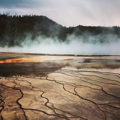 #yellowstone (chicabrandita) Tags: square squareformat mayfair iphoneography instagramapp uploaded:by=instagram