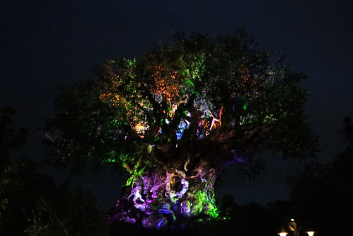 Illuminated Tree of Life 1