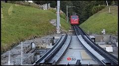 Cogwheel Railway (Pilatus Bahnen) to Pilatus Mountain in Switzerland... 🇨🇭 (Shobana Shanthakumar) Tags: swisspeople swissnature swissbeauty swissberg swisstravel swisstrain sbb cogwheelrailway switzerland schweiz suisse wallpaperdesktopsummerdes summer google europe beautiful naturebackground nature pilatusmountain pilatuskulm swissmountains mountain alpsmountain swissrailway