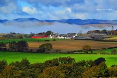 (Zak355) Tags: rothesay isleofbute bute scotland scottish fog mist haar weather farm