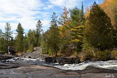 (Sarah-Vie) Tags: dsc0095 parcdelariviredoncaster automne paysagedautomne rivire fort arbre
