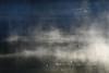 500_2313 (DianeBerky19) Tags: jacksonholewyoming wy lake nikond500